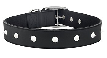 Gummi Dog Collar Spike Extra Large Black