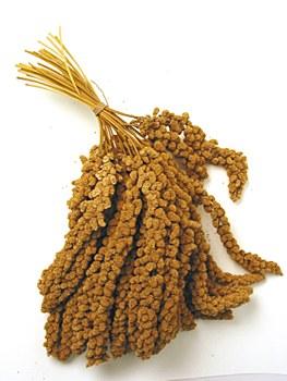 Millet Spray 1kg Bird Treat