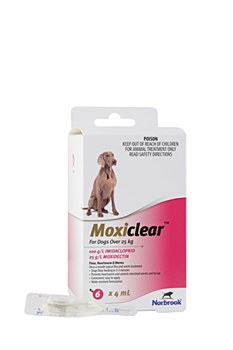 Moxiclear For Dogs Over 25kg (6 Pack)