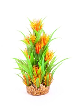 Kazoo Plant Combination Thin Leaf with Orange Flower 20cm