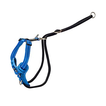 Rogz Stop Pull Dog Harness Large Blue