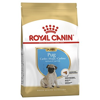 Royal Canin Pug Junior 1.5kg Dry Dog Food