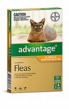 Advantage for Kittens & Small Cats up to 4kg (4 Pack)