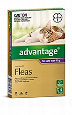 Advantage for Cats 4kg and larger (4 Pack)