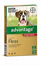 Advantage Red Flea Treatment for Large Dogs 10 - 25kg (4 Pack)