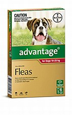 Advantage Red Flea Treatment for Large Dogs 10 - 25kg (6 Pack)