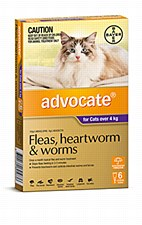 Advocate for Cats 4kg and larger (6 Pack)