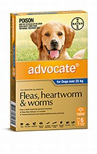Advocate for Dogs 25kg and larger (6 Pack)