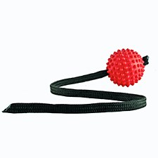 Aussie Dog Long Ball Hard Red Dog Toy