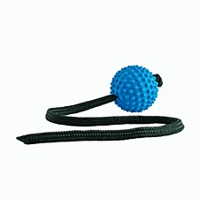 Aussie Dog Long Ball Soft Blue Dog Toy