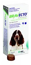 Bravecto Flea and Tick Chew for Medium Dogs 10-20kg