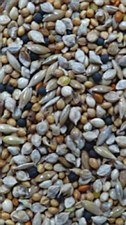 Avigrain Premium Breeders Budgie Mix 10kg