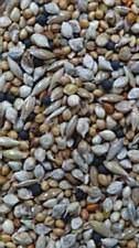 Avigrain Premium Breeders Budgie Mix 5kg