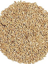 Avigrain Plain Canary Seed 20kg Bird Food