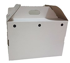 Pet Carrier Cardboard Collapsible