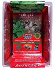 Mr Fothergill's Seed Raiser Catnip Kit
