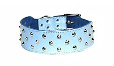 Dogue Dog Collar Studded 45cm Blue