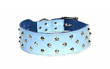 Dogue Dog Collar Studded 65cm Blue