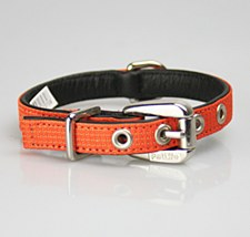 Petlife Dog Collar Small 37.5cm Action Orange