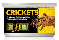 Exo Terra Crickets Can 34g Reptile Food
