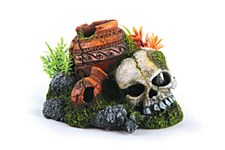 Kazoo Fish Tank Ornament Skull with Plants and Air Small