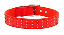 Gummi Dog Collar Bling Extra Large Red