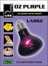 URS OZ Purple Night Globe Large 75W