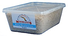 Minibeasts King Mealworms 50g Live Reptile Food