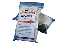 Minibeasts Rats Weaner 45-75g Frozen Reptile Food (3 Pack)