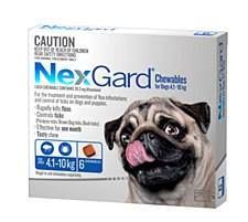 NexGard Flea and Tick Chew for Dogs 4.1kg to 10kg (6 Pack)