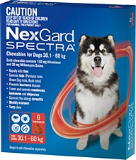 NexGard Spectra Wormer and Flea Chew for Dogs 30.1kg to 60kg (6 Pack)