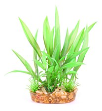 Kazoo Bush Combination Green with Thin Leaf 20cm