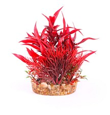 Kazoo Bush Combination Red with Assorted Leaf 20cm