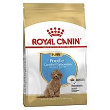 Royal Canin Poodle Junior 3kg Dry Dog Food