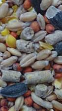 Avigrain Free Range Backyard Layer Scratch Mix 5kg Poultry Food