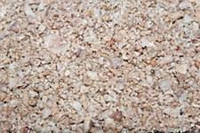 Shell Grit Medium 25kg Bird Food