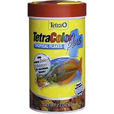 Tetra Color Tropical Flakes 62g Fish Food
