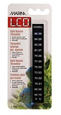 Marina Minerva Digital Thermometer