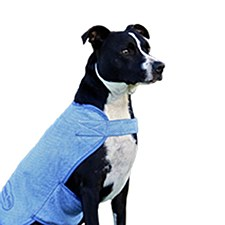 Aussie Dog Wet Vest Large 40cm
