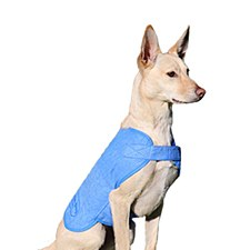 Aussie Dog Wet Vest Medium 35cm