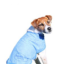 Aussie Dog Wet Vest Small 30cm