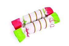 Kazoo Bon Bon Large 140g Christmas Dog Treat