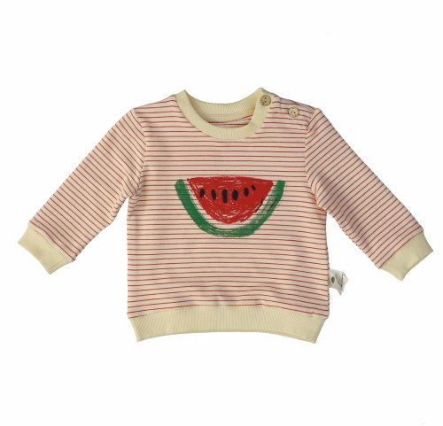 WATERMELON STRIPE TOP