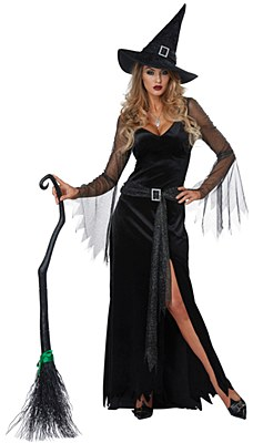 Rich Witch Adult Costume