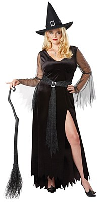Rich Witch Adult Plus Costume