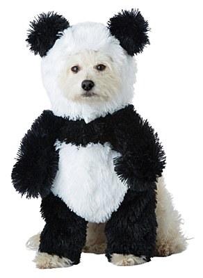 Panda Pooch Pet Costume