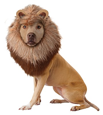 Lion Mane Headpiece Pet Costume