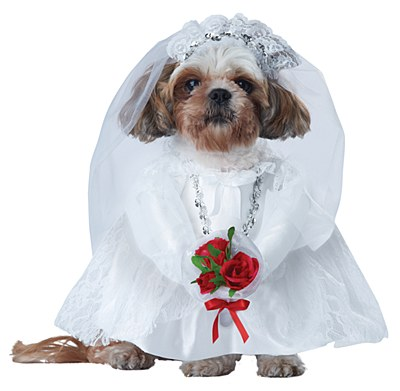 Puppy Love Bride Pet Costume