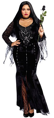 Frightfully Beautiful Morticia Adult Plus Costume