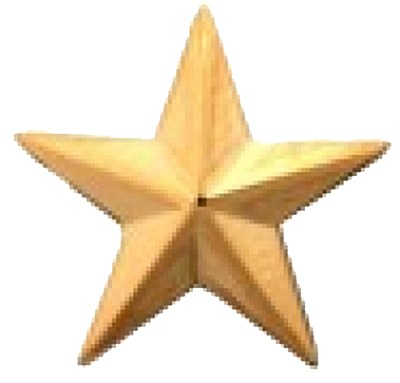 One Star General Insignia Pin Large